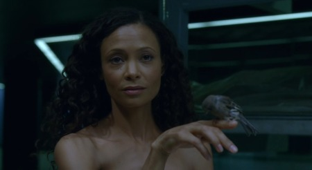westworld-saison-1-episode-05-6