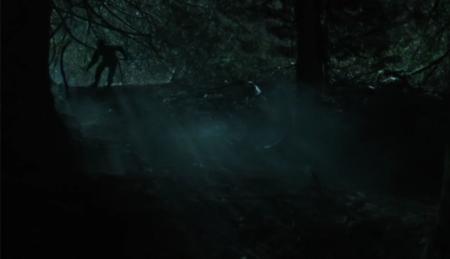 PBB Forêt nuit